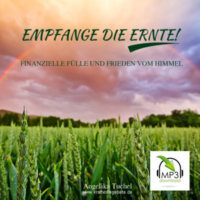 CD-Cover-Finanzielle-Fülle-MP3-Download
